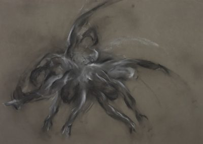 Movement II, 59 x 84cm, Charcoal & Chalk on Paper
